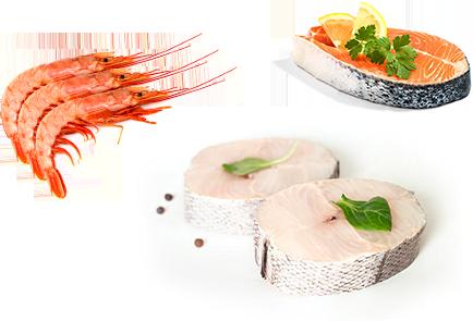 pescado-marisco-distribucion zulimar