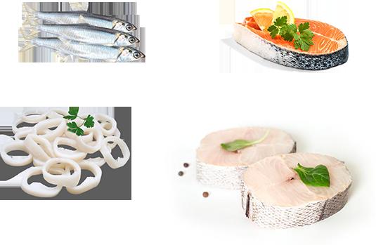 pescados-destacado-zulimar