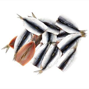 zulimar sardina